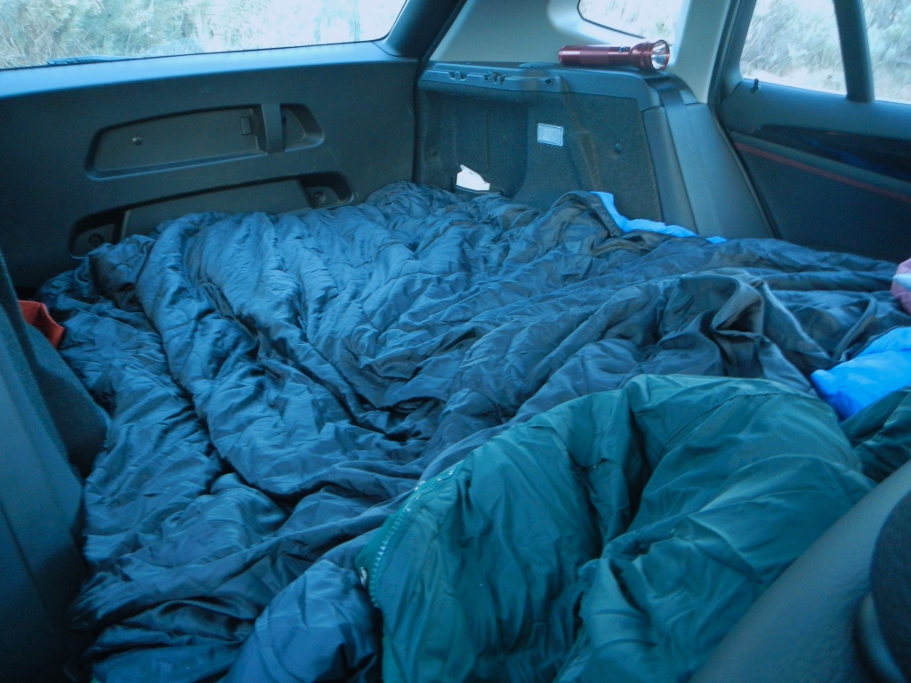 Cozy Car Bed